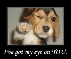 Eye on you. 3
