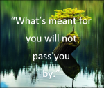 will not pass you by