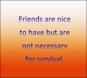 Friends are nice but not always needed