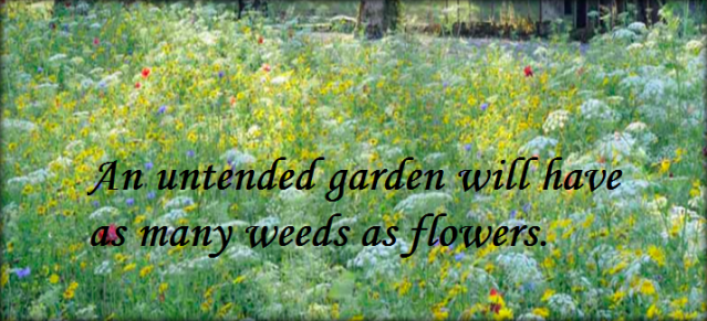 One weed with Enough Time will Destroy Every Garden.